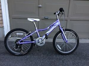Giant Revel 20 inch bike