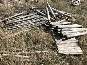 Fence posts and large posts