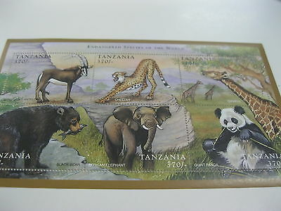 TANZANIA-FAUNA-WILD ANIMAL-ENDANGERED ANIMALS-PANDA GIRAFFE BEAR ELEPHANT