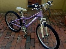 Girls GIANT Areva 250 lilac purple mountain bike Bowden Charles Sturt Area Preview