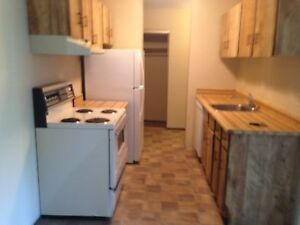 Wetaskiwin Two Bedroom Apartment!