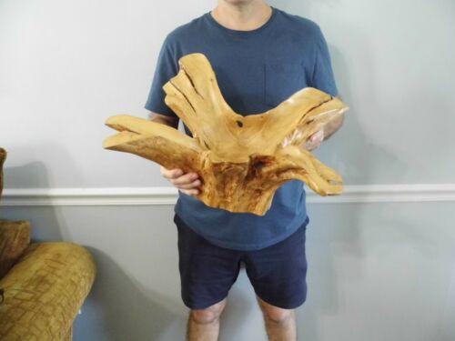 "Large Carved Wood Decorative Piece 22"" x 10 3/4"""