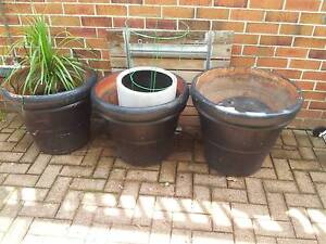 extra Large garden pots Tuncurry Great Lakes Area Preview