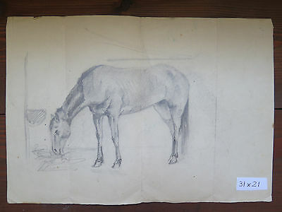 Zeichnung Studio (Zeichnung Antike Studio für Pferde Katalog für ein Pferd Bleistift auf Papier)