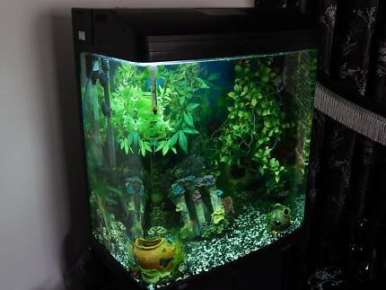 130 L Fish Tank with all working accessories Metford Maitland Area Preview