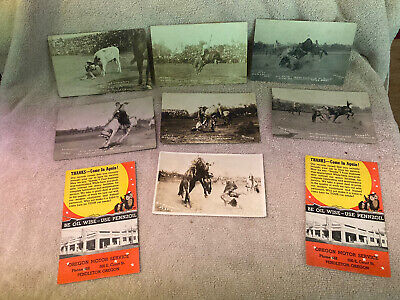 Seven Vintaqe Pendleton Round-Up Postcards, 1 Cowgirl