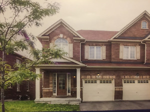 House for rent, 3bed, 3bath, semi-detached in Berczy Markham