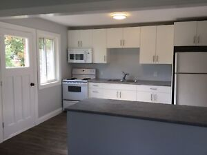 Completely Renovated, bright and beautiful - 2bdrm (Dec 1)