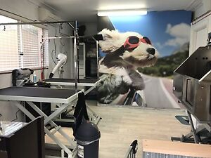 Dog grooming Canberra region ph  Nicholls Gungahlin Area Preview