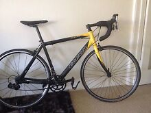 Carrera road bike, LARGE SIZE, 55 cm frame Mosman Mosman Area Preview