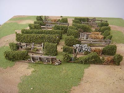 HEDGE   SECTIONS 28mm wargames made to order