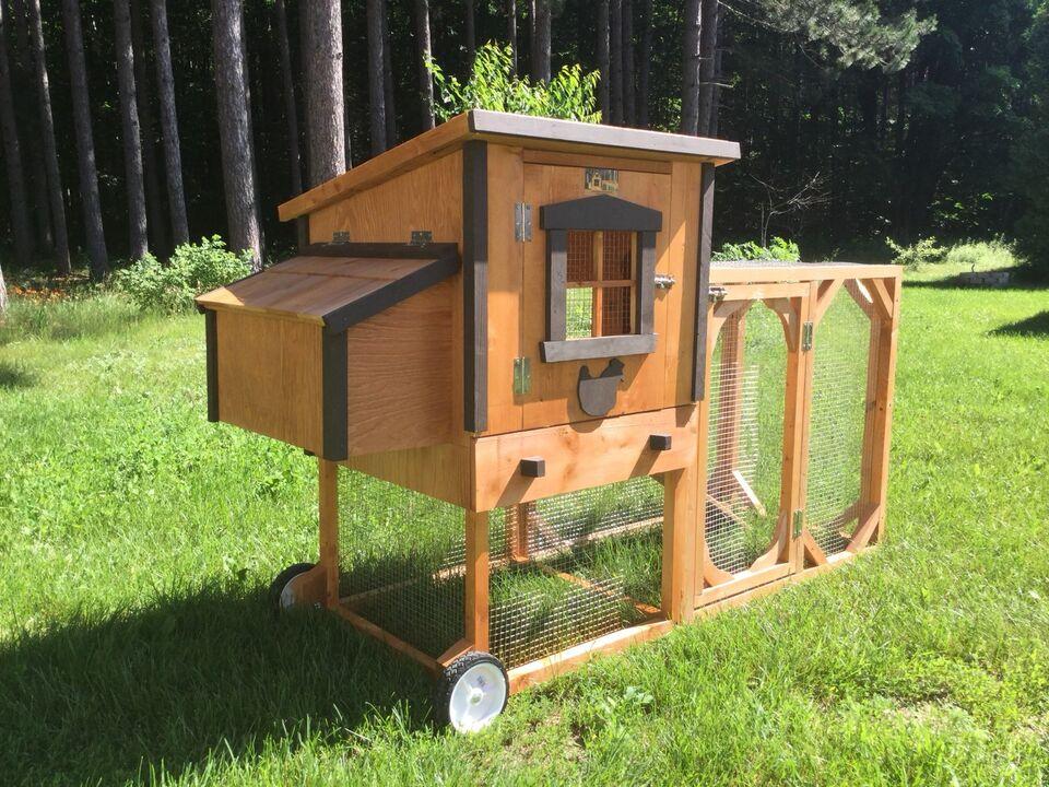 poulailler urbain poule animaux de ferme shawinigan. Black Bedroom Furniture Sets. Home Design Ideas
