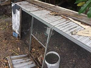 Chook Tractor Plus free chicken Noosa Heads Noosa Area Preview