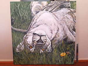 ART FOR SALE. African lion. Honey bee. Painting Beldon Joondalup Area Preview