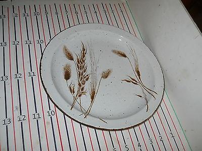 Midwinter Wild Oats Dinner Plate