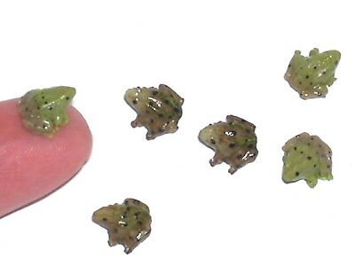 1 miniature dollhouse ity bity Tiny baby Frog loose locket animal nail art mini*