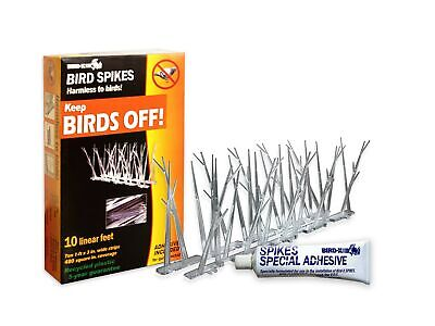 Bird Spikes Kit - Bird-X Plastic Polycarbonate Bird Spikes Kit Adhesive Glue Covers 10ft Coverage