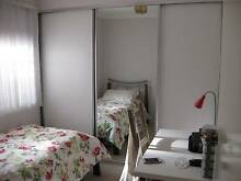 Single room for Girl Innaloo Stirling Area Preview