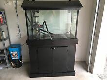 3ft marine fish tank with sump - cabinet has been repainted black Griffin Pine Rivers Area Preview
