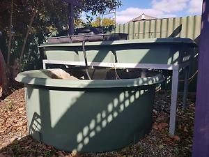 Courtyard aquaponics system St James Victoria Park Area Preview