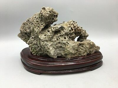 Natural Polished Viewing Stone Suiseki Scholar Rock Ying Stone Rough Decor