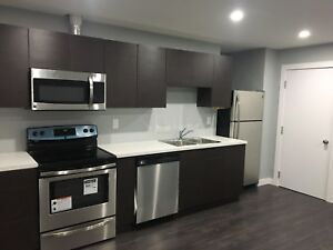 1 Bedroom basment for rent in Harbour Landing by Dec. 1st