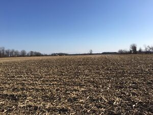 FARM LAND FOR SALE in beautiful Norfolk County. 35 ACRES