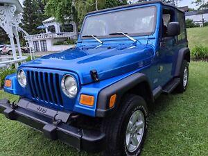2005 Jeep TJ Sport / Wrangler
