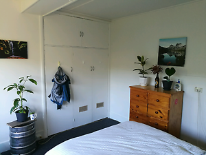 $125/week sunny South Hobart room for rent South Hobart Hobart City Preview