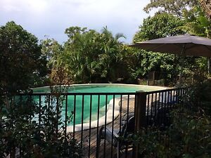 OLDER PERSON WANTED room rent Buderim Maroochydore Area Preview