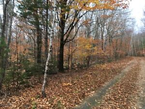 Land for sale, cottage country, Labelle