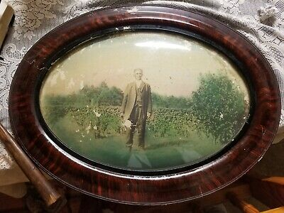 Vintage Oval Tiger Stripe Wood Convex Bubble Glass Picture Man in Field