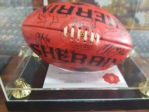 West coast eagles football Embleton Bayswater Area Preview