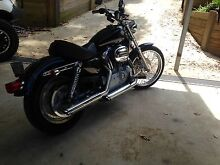 Harley 883 custom sportster  $8000 will swap for off-road camper Nambour Maroochydore Area Preview