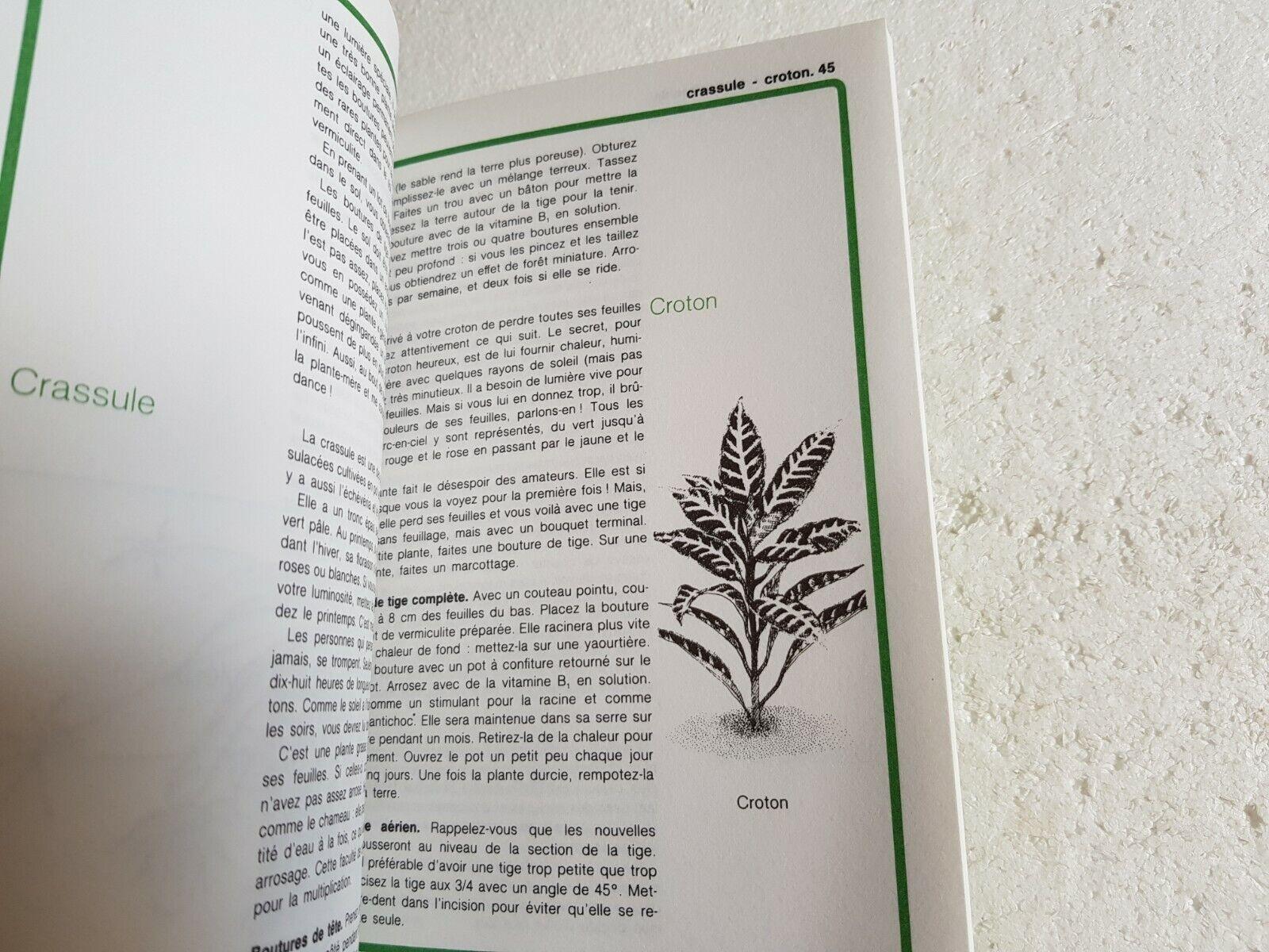 Rustica  les boutures de plantes d'appartement - suzanne crayson la vie en vert