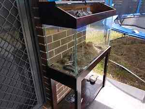 Fish tank with stand and hood Cambridge Gardens Penrith Area Preview
