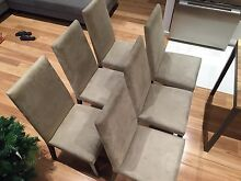 6 Freedom Furniture Linen coloured suede dining chairs Lane Cove North Lane Cove Area Preview