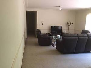 Nice and airy 2 bedroom unit, Roommate required Parramatta Parramatta Area Preview