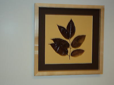 Framed Autumnal Botancial - White Ash Tree Leaves with Sugar Maple Frame