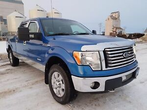 2011 Ford F-150 XLT Chrome Accents, Crew Cab