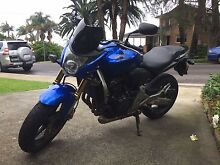 Honda CB600F Hornet - Great condition North Curl Curl Manly Area Preview
