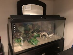 55g tank all included