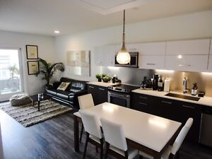 One month free rent-Executive furnished condo downtown Saskatoon