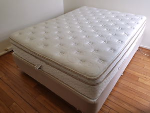 Luxury queen size bed. Sealy Bronte Eastern Suburbs Preview