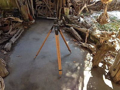 VINTAGE MILLER SURVEYOR OR PHOTOGRAPHER TRIPOD WITH LEVEL MADE IN AUSTRALIA  for sale  Hurley