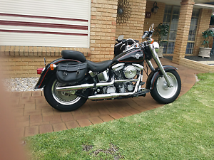 Harley Davidson Fatboy Noranda Bayswater Area Preview