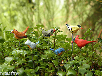 (Miniature Dollhouse FAIRY GARDEN ~ Set of 6 TINY Bird Picks Birds ~ NEW)