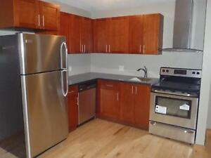 Downtown Bachelor Unit - Available May 1, 2019