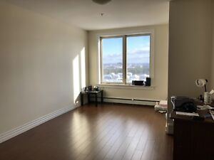 Looking for a professional, female roommate in a two-bedroom apt