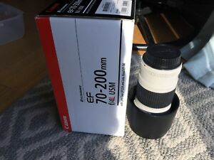 Canon 70-200 mm f/4 L  USM (non is)